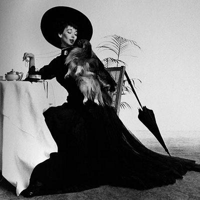 Irving Penn (Audry Hepburn)