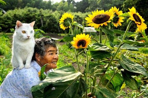Miyoko Ihara (2)