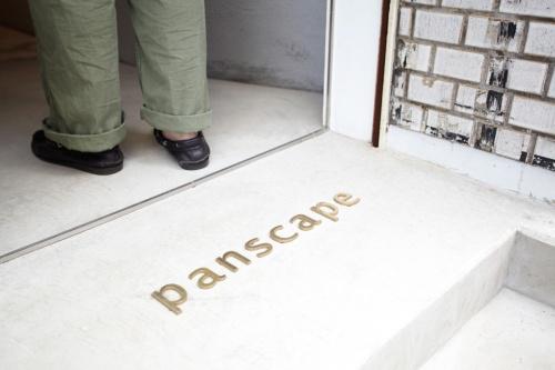 Panscape (3)
