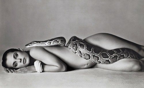 Richard Avedon (8)
