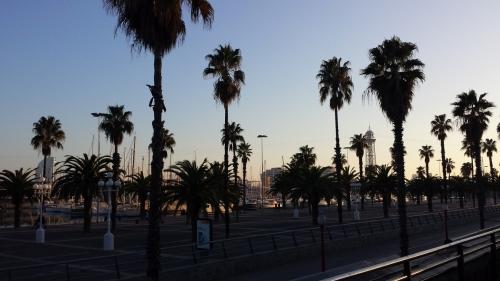 El tornillo que te falta - Barcelona - B.Lumbreras (7)
