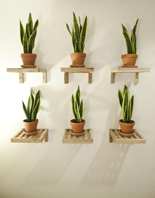 Ideas para una peque a terraza el tornillo que te falta - Imagenes de terrazas con plantas ...
