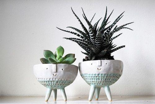 viernes de inspiración - cactus (1)