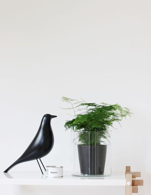 Eames House Bird 6