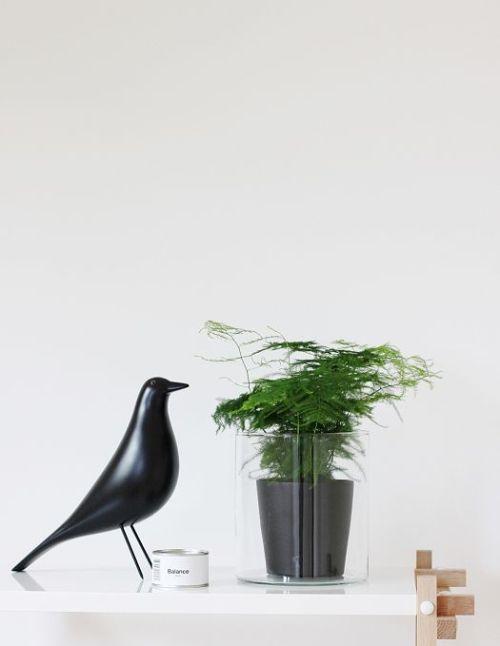 Eames House Bird 6