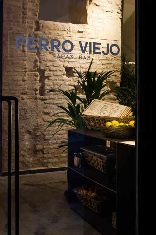 PERRO VIEJO - DONAIRE (1)